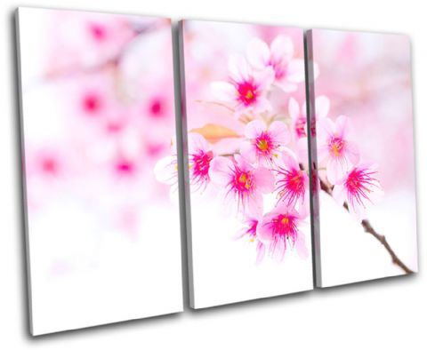 Cherry Blossoms Floral - 13-1543(00B)-TR32-LO